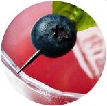 detail of a blueberry basil margarita craft cocktail detail of a blackberry mule craft cocktail ©Cyndi Long (clstudios.com)